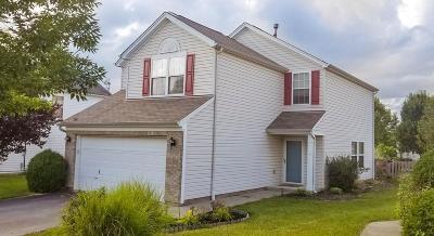 Hamilton Single Family Home For Sale: 7680 Hillsdowne Circle