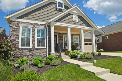 Blue Ash Single Family Home For Sale: 10518 Sundance Court