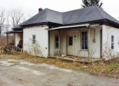 Adams County, Brown County, Clinton County, Highland County Single Family Home For Sale: 157 S Broadway Street