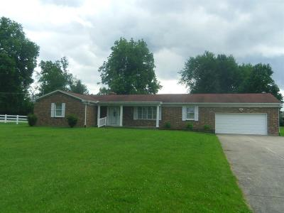 Liberty Twp Single Family Home For Sale: 6151 Hankins Road