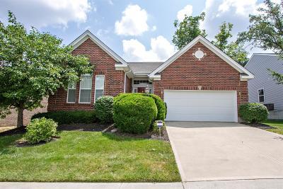 Hamilton Single Family Home For Sale: 5264 Venetian Way