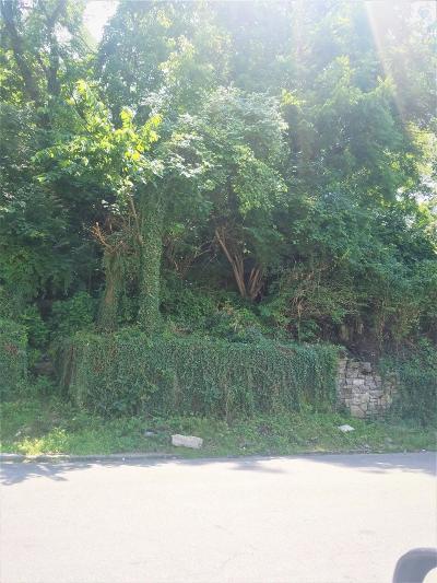 Cincinnati Residential Lots & Land For Sale: 513 Tafel Street