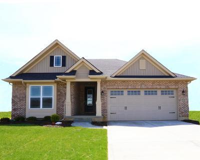 Ross Twp Single Family Home For Sale: 2045 Demoret Lane #VC11