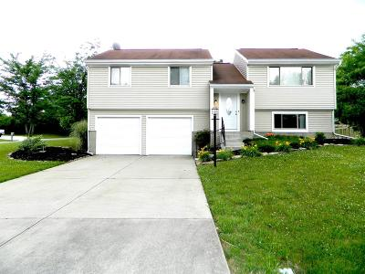 Liberty Twp Single Family Home For Sale: 6363 Port Lane