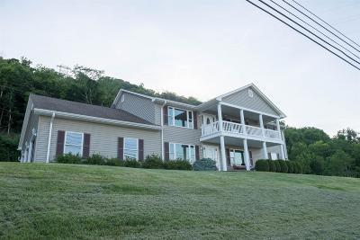 Aurora Single Family Home For Sale: 11353 Sr 56
