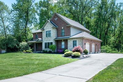 Delhi Twp Single Family Home For Sale: 6513 Candlestick Drive