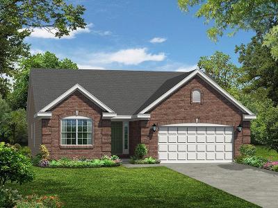 Hamilton Single Family Home For Sale: 698 Oak Forest Drive