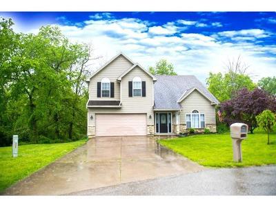 Lawrenceburg Single Family Home For Sale: 22320 Montana Drive