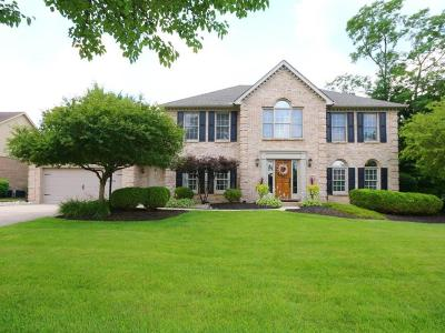 Clermont County Single Family Home For Sale: 6309 Trailridge Court