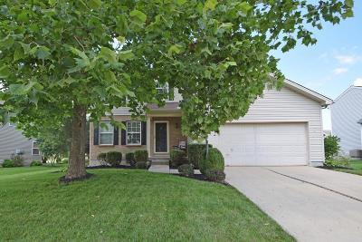 Hamilton Single Family Home For Sale: 744 Thornton Drive