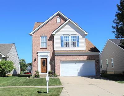Hamilton Single Family Home For Sale: 604 Indian Lake Drive