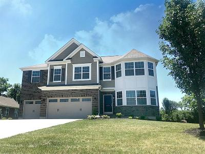 Liberty Twp Single Family Home For Sale: 6993 Francis Drive
