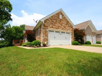 Crosby Twp, Harrison Twp, Miami Twp, Whitewater Twp, Morgan Twp, Ross Twp Condo/Townhouse For Sale: 802 Town Scapes Court