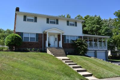 Delhi Twp Single Family Home For Sale: 5677 Victoryview Lane
