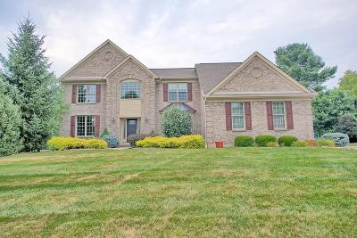 Clermont County Single Family Home For Sale: 804 Walnut Ridge Drive