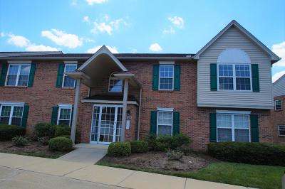 Colerain Twp Condo/Townhouse For Sale: 8784 Carrousel Park Circle #128