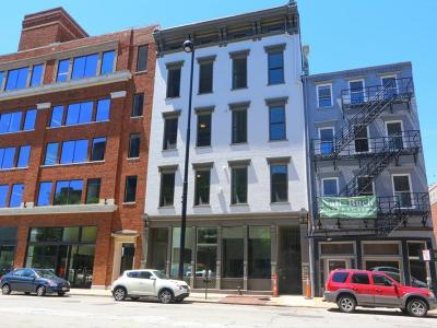 Cincinnati Condo/Townhouse For Sale: 813 Broadway Street #2D