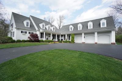 Turtle Creek Twp Single Family Home For Sale: 251 Hickory Meadows Lane