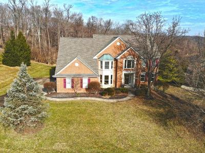 Anderson Twp Single Family Home For Sale: 8204 Wycliffe Drive