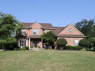 Hamilton County Single Family Home For Sale: 9600 Stonemasters Drive