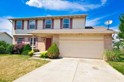 Single Family Home For Sale: 3078 Macintosh Lane