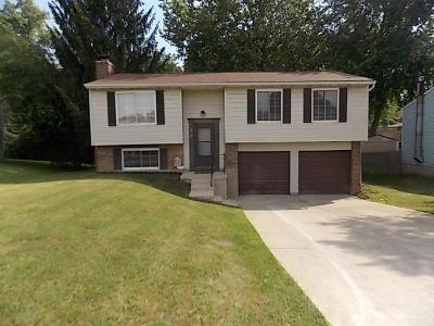 Colerain Twp Single Family Home For Sale: 10209 Snowflake Lane
