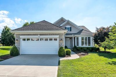 Hamilton Single Family Home For Sale: 1423 Grovesedge Drive