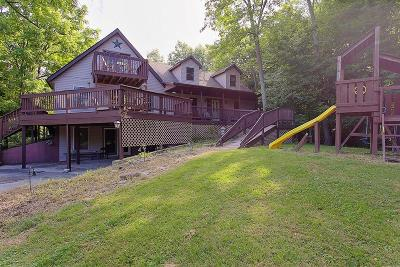 Adams County, Brown County, Clinton County, Highland County Single Family Home For Sale: 5699 Tri County Highway
