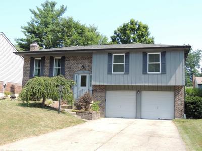 Cincinnati Single Family Home For Sale: 7186 Honeywood Court