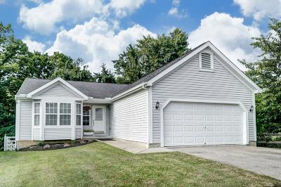 Warren County Single Family Home For Sale: 9134 Stony Creek Court