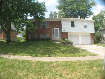Blue Ash Single Family Home For Sale: 10871 Wengate Lane
