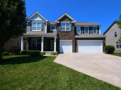 Clermont County Single Family Home For Sale: 4127 Roland Creek Drive
