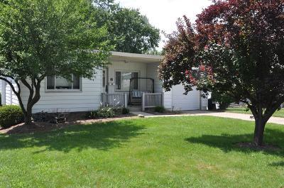 Delhi Twp Single Family Home For Sale: 595 Judy Lane