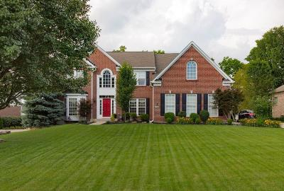 Warren County Single Family Home For Sale: 3942 Granite Court
