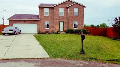 Adams County, Brown County, Clinton County, Highland County Single Family Home For Sale: 5026 Sean Circle