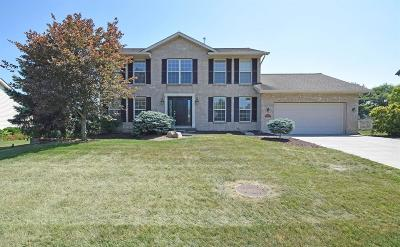Liberty Twp Single Family Home For Sale: 4295 Pheasant Trail Court