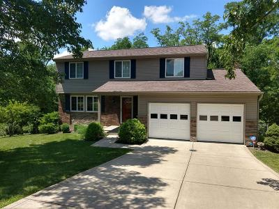 Delhi Twp Single Family Home For Sale: 1167 Hickorylake Drive