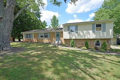 Miami Twp Single Family Home For Sale: 280 Indian View Drive