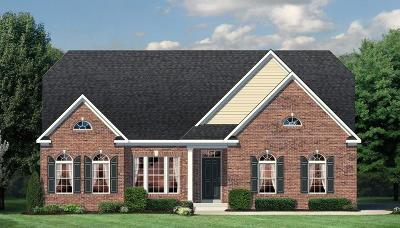 Liberty Twp Single Family Home For Sale: 4898 Willow Springs Drive