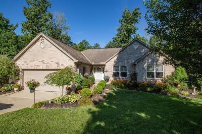 Lawrenceburg Single Family Home For Sale: 20535 Alpine Drive