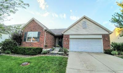Liberty Twp Single Family Home For Sale: 5472 Sunrise View Circle