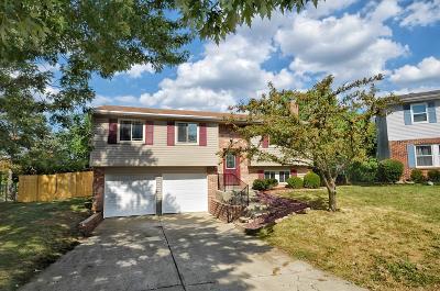 Colerain Twp Single Family Home For Sale: 2555 Keysport Lane