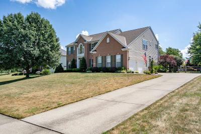 Miami Twp Single Family Home For Sale: 5845 Irish Dude Drive