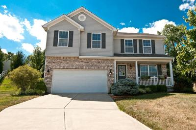 Single Family Home For Sale: 63 Ridge Wood Drive