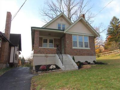Cincinnati Single Family Home For Sale: 2953 Feltz Avenue