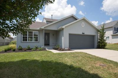 Single Family Home For Sale: 65 Hollytree Drive