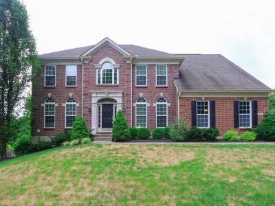 Single Family Home For Sale: 8845 Cross Street