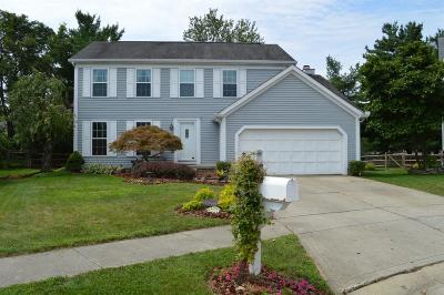 Loveland Single Family Home For Sale: 219 Thorobred Road
