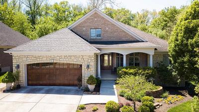 Single Family Home For Sale: 423 Fox Chapel Run
