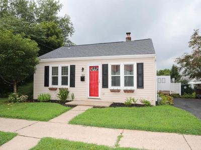 Single Family Home For Sale: 483 Valley View Drive